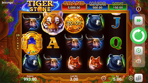 Tiger Stone Hold and Win Slot RTP, Variance, and Payouts