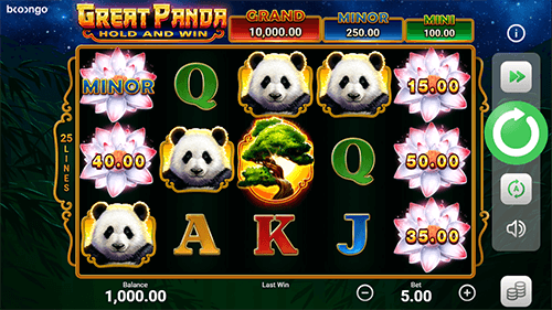 Playing Great Panda Hold and Win for Real Money